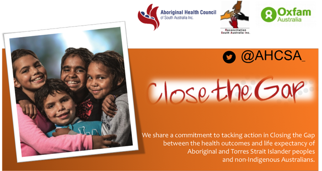 indigenous australians health programme programme guidelines