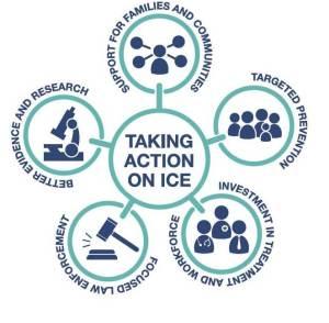 Ice Action Plan Dec 2015