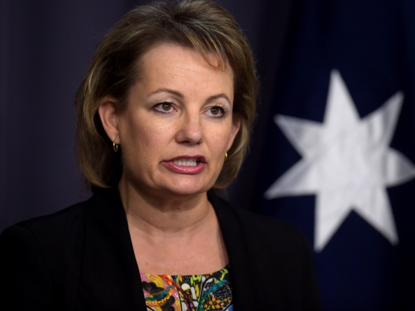 Health Minister Sussan Ley speaks during a press conference at Parliament House in Canberra, Wednesday, May 27, 2015. Ms Ley commented on the planed Pharmaceutical Benefits Scheme to be reformed. (AAP Image/Lukas Coch) NO ARCHIVING