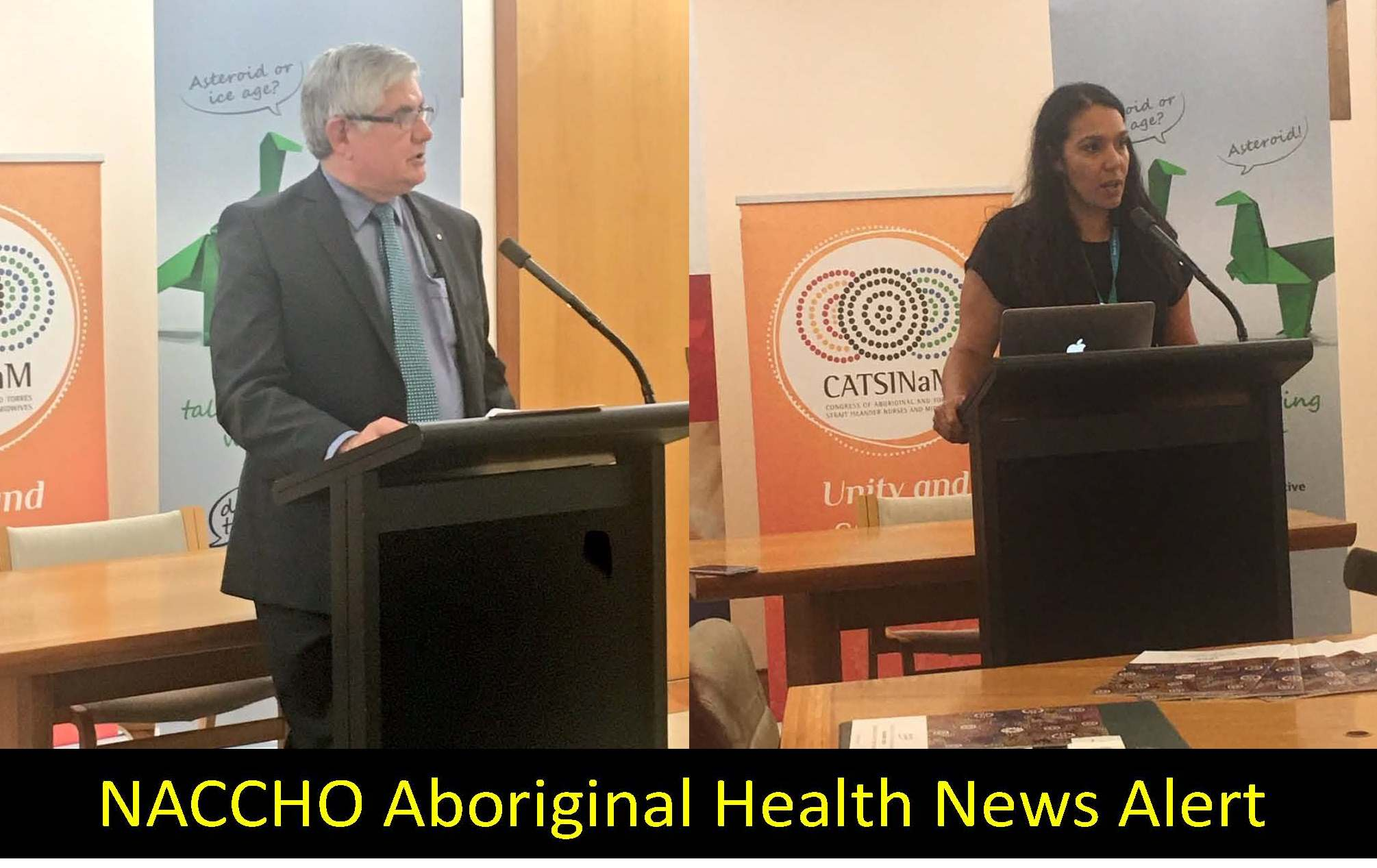 indigenous health care essay Social determinants and the health of indigenous peoples in australia – a human rights based approach workshop paper presented by mr darren dick on behalf of mr tom calma, aboriginal and torres strait islander social justice commissioner.