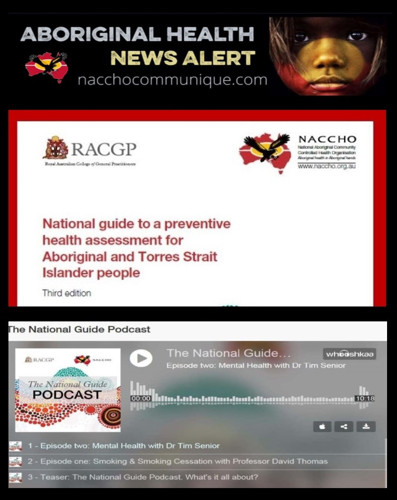Naccho And Racgp National Guide To A Preventative Health Assessment
