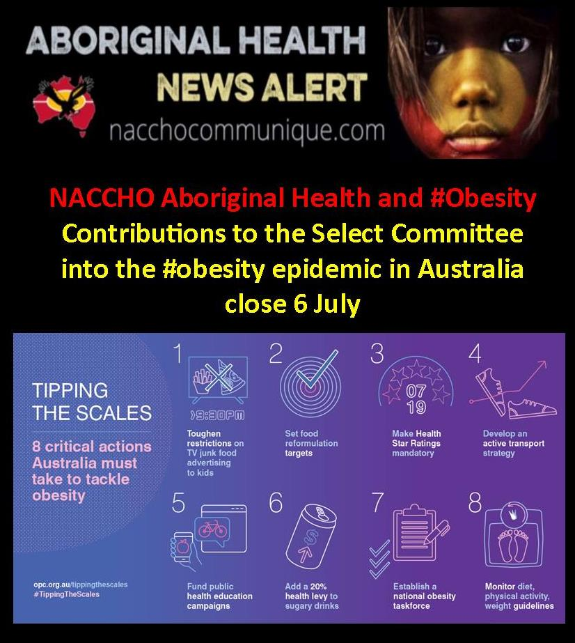 Naccho Aboriginal Health And Obesity Contributions To The Select Committee Into The Obesity Epidemic In Australia Close 6 July Naccho Aboriginal Health News Alerts