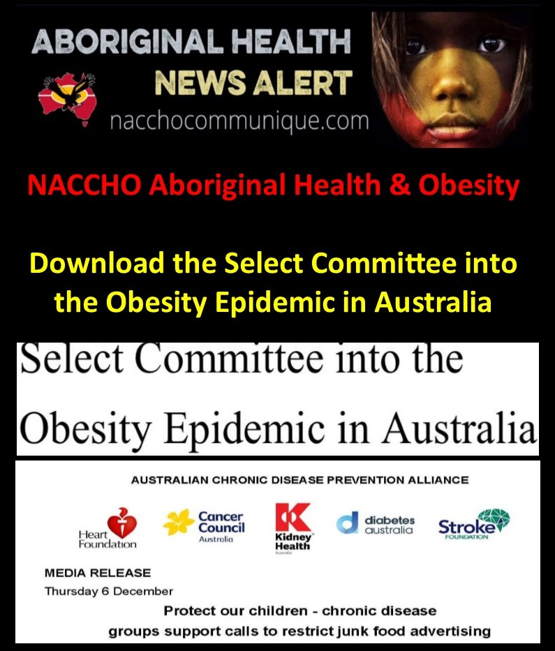 a7835ab85105f9 NACCHO Aboriginal Health and  Obesity    refreshtheCTGrefresh   Download  the Select Committee into the  Obesity Epidemic in Australia 22  recommendations ...
