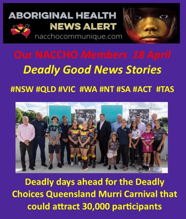 e7d0ccab2dd NACCHO Members  VoteACCHO  Election2019 Update and  Aboriginal Health  Deadly Good News Stories    NSW Katungul and Armajun  QLD  DeadlyChoices   Wuchopperen ...