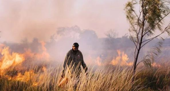 Aboriginal man conducting controlled grass burn