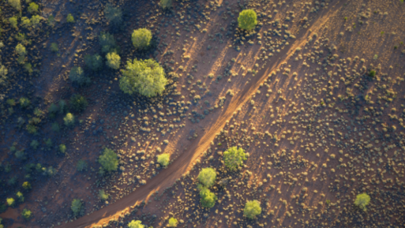 drone photo of outback, sparse green vegetation