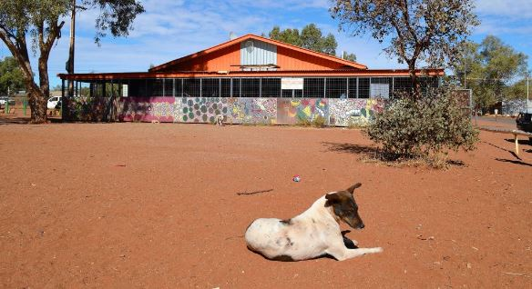 dog sitting out the front of the Amata store, Amata